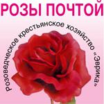 Розоводческое крестьянское хозяйство «Эврика»